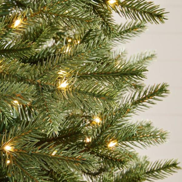 Home Accents Holiday 7 5 Ft Jackson Noble Fir Slim Led Pre Lit Artificial Christmas Tree With 700 Color Changing Micro Dot Lights W14n0211 The Home Depot