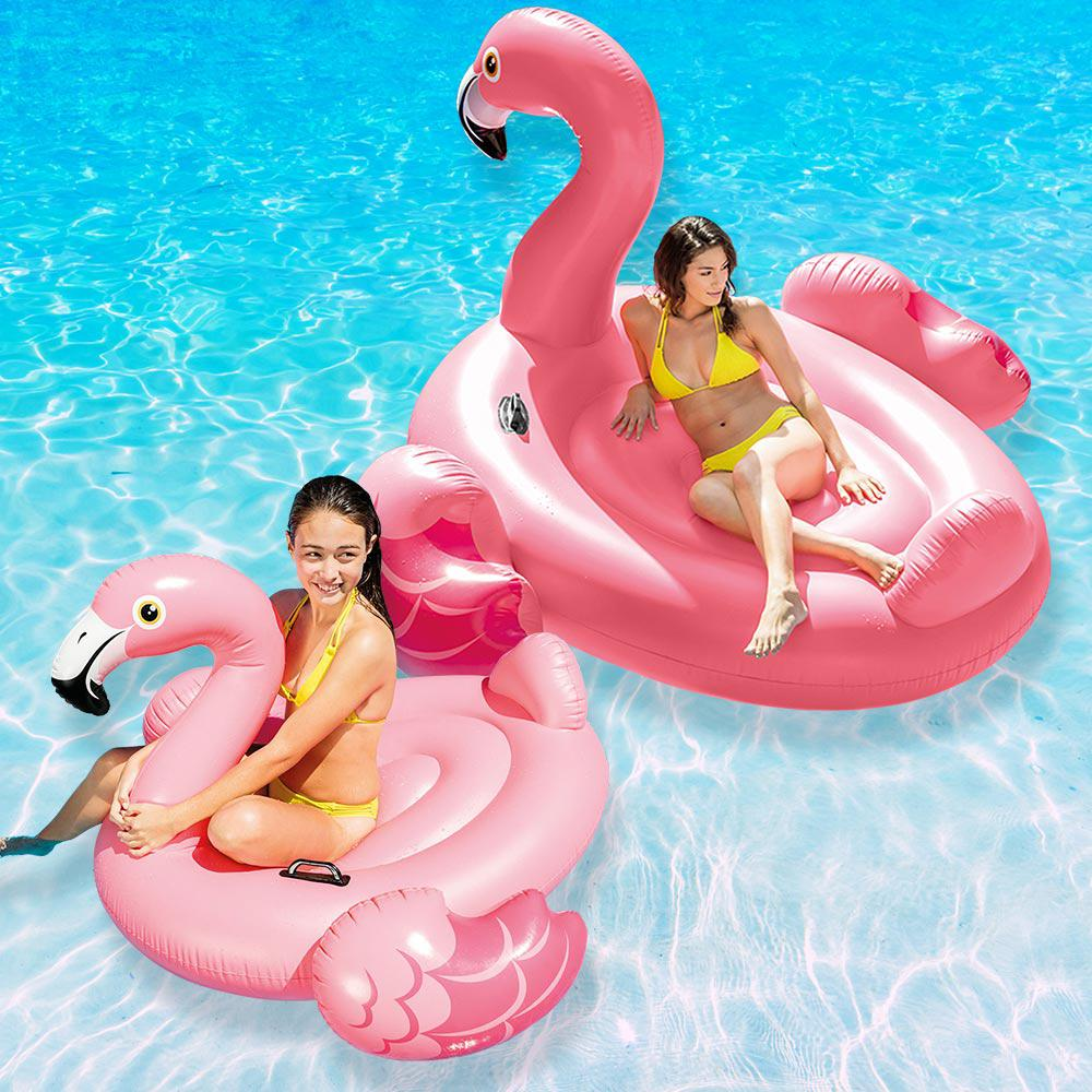 Intex Flamingo Swimming Pool Float Combo Pack 57558ep 88ep