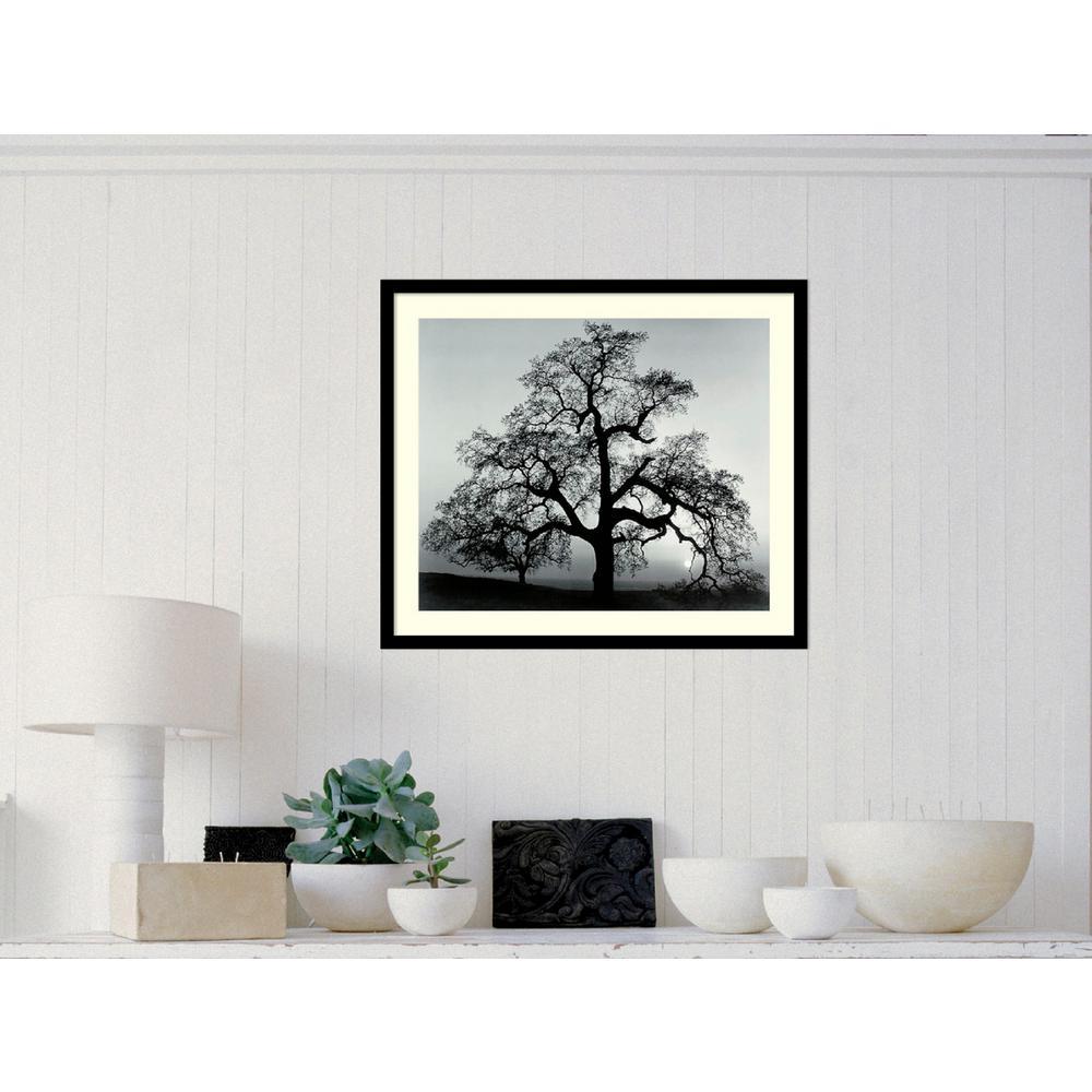 """27 in. W x 23 in. H """"Oak Tree, Sunset City,"""