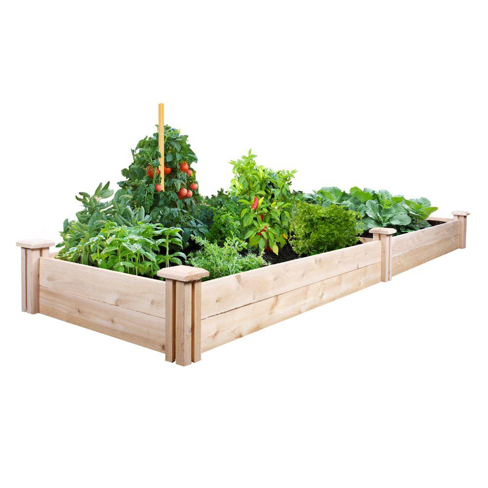 2 ft. x 8 ft. x 7 in. Cedar Raised Garden