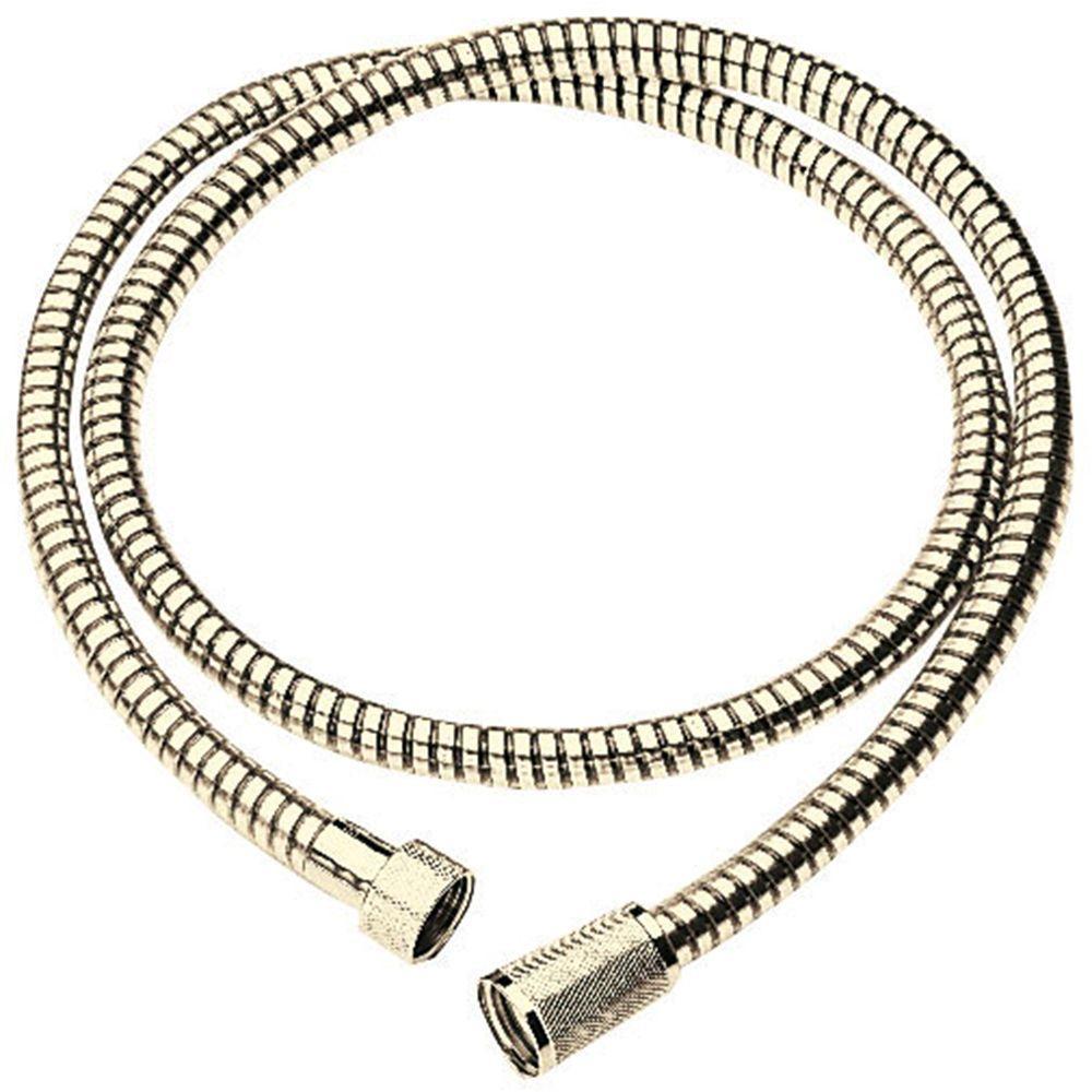 Relexa 59 in. Shower Hose in Polished Brass