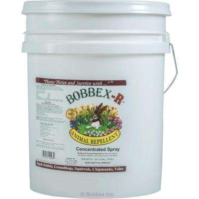5 Gal. Bobbex-R Animal Repellent Concentrated Spray