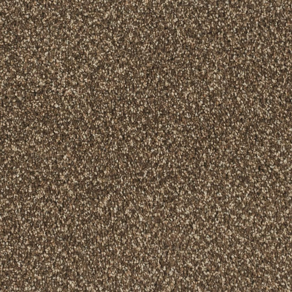 Home Decorators Collection Carpet Sample Wholehearted I