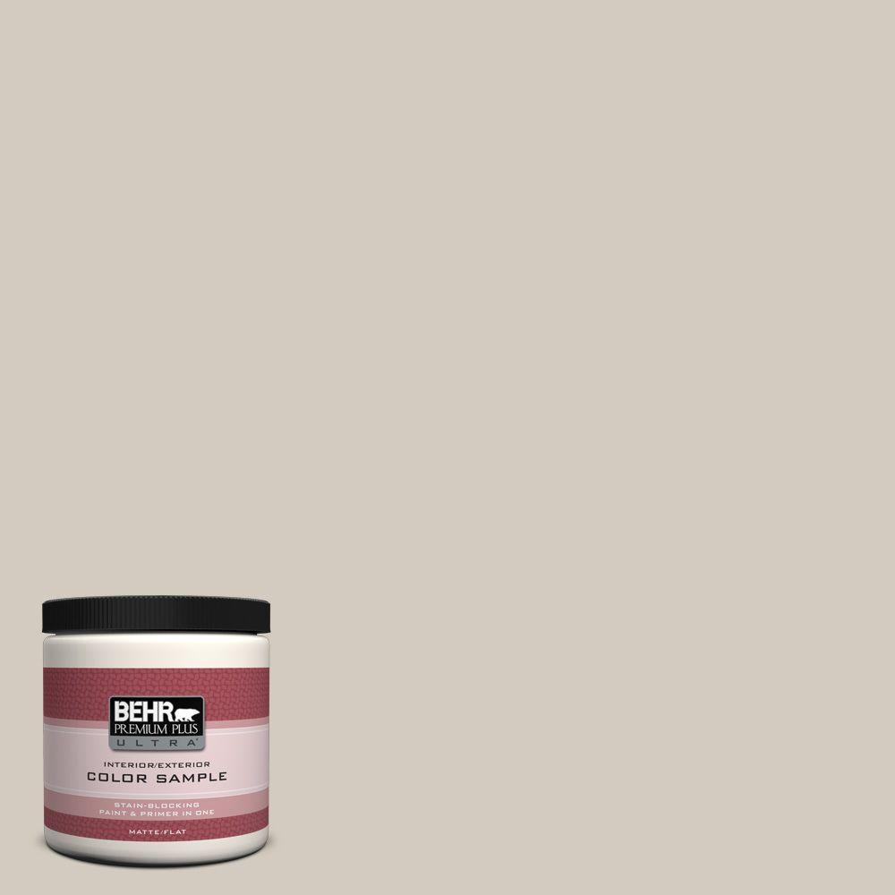 BEHR Premium Plus Ultra 8 oz. #N220-2 Ashen Tan Interior/Exterior Paint Sample
