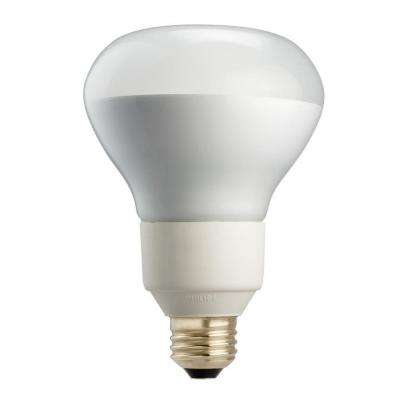 65W Equivalent Soft White R30 Flood Dimmable CFL Light Bulb (2-Pack)