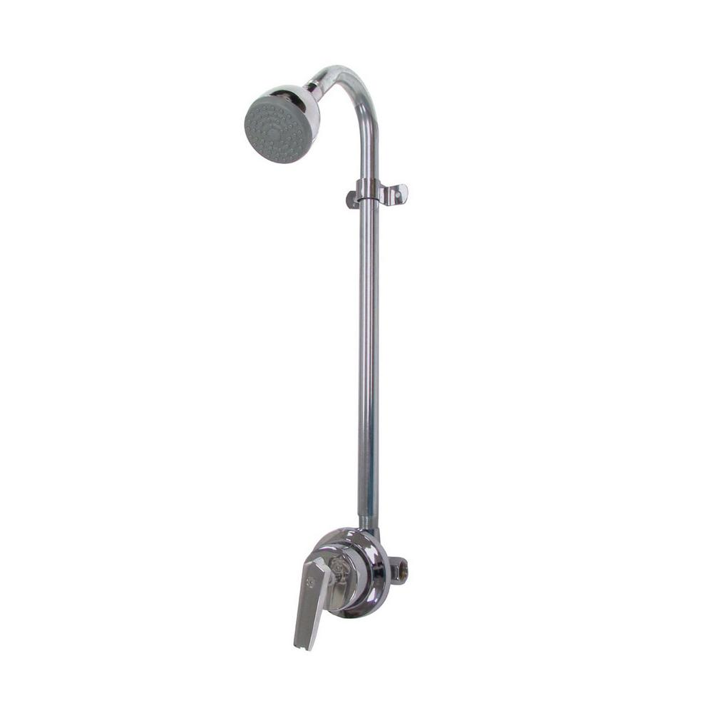 Best Speakman Shower Head Home Depot Contemporary - Bathroom with ...