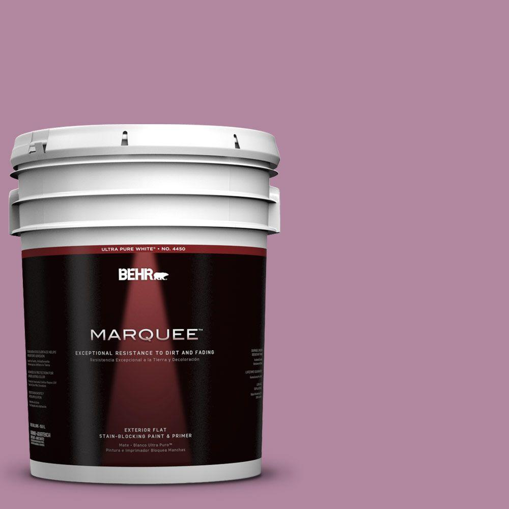 5-gal. #690D-5 Winsome Rose Flat Exterior Paint