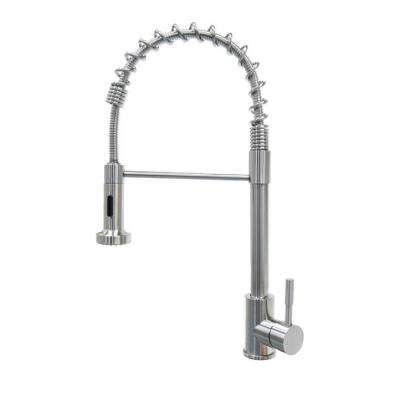 Coiled Spring Sprayer Faucet in Stainless Steel
