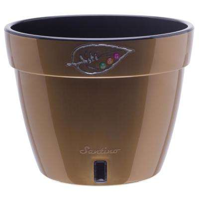 Asti 12.6 in. Gold/Black Plastic Self Watering Planter