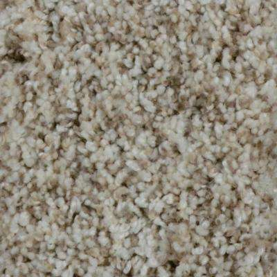 Carpet Sample - Trendy Threads II - Color Marvell Texture 8 in. x 8 in.