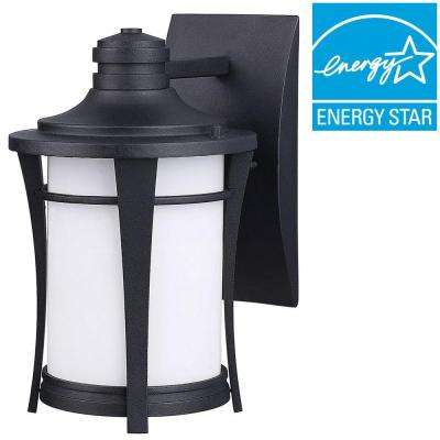 Leah 1-Light Black Outdoor Energy Star Wall Lantern with Opal Glass