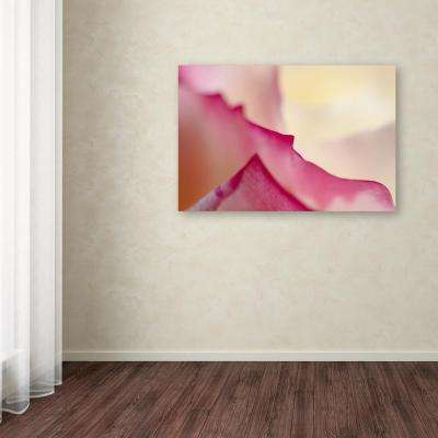 "16 in. x 24 in. ""Mountains of Summer"" by Beata Czyzowska Young Printed Canvas Wall Art"