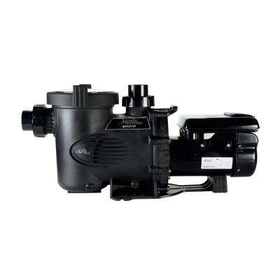 ePump 2.20 THP Variable Speed Pool Pump