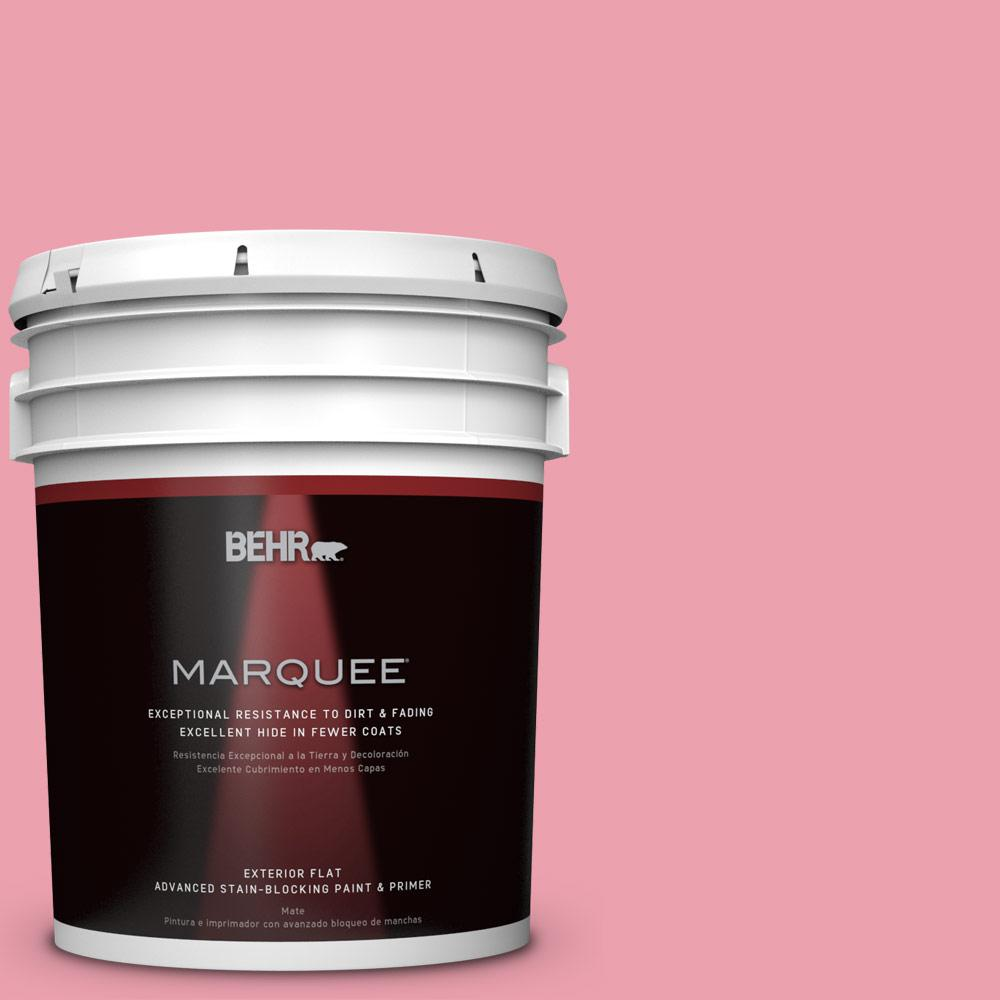 BEHR MARQUEE 5-gal. #P150-3 Pinque Flat Exterior Paint