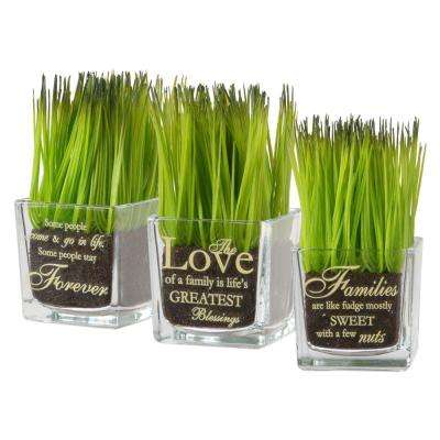 Assortment-Square Glass Pot Printed Forever, The Love and Families