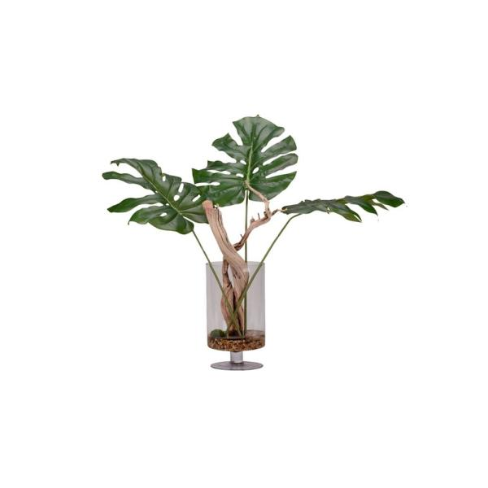 D&W Silks Indoor Jumbo Arrowhead Philo Branches in Glass Pedestal Vase