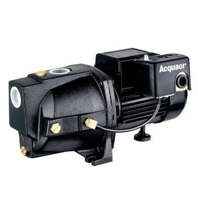 3/4 HP Dual Voltage Cast Iron Shallow Well Jet Pump