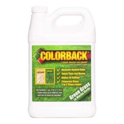 1 Gal. Green Grass Colorant Covering up to 3600 sq. ft.
