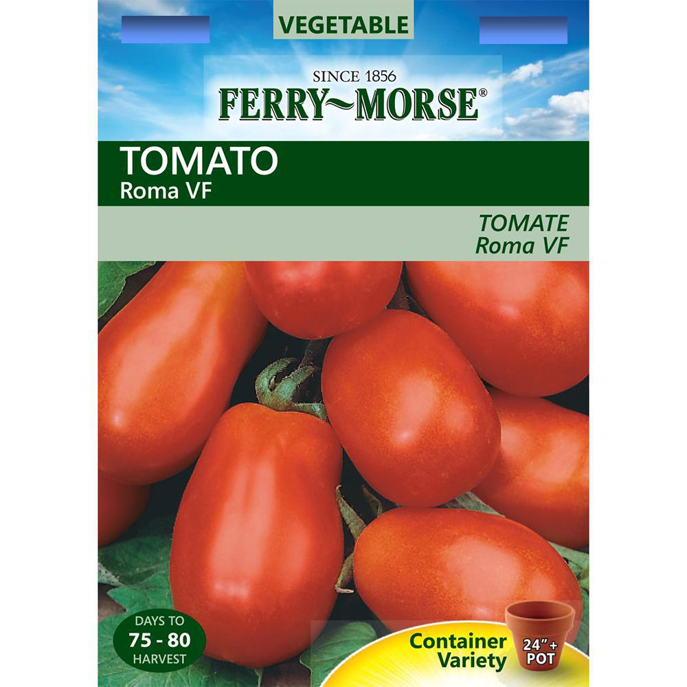 Tomato Hundred Poods: variety description, photo, yield reviews 92