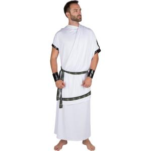 Extra-Large Adult Men's Grecian Toga Halloween Costume by