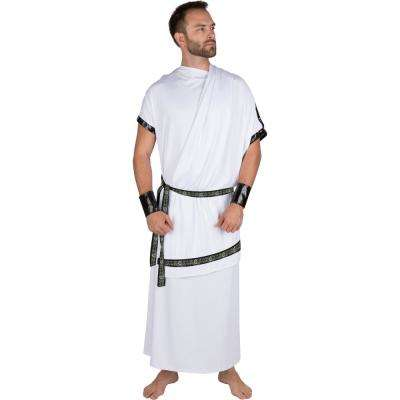 Extra-Large Adult Men's Grecian Toga Halloween Costume