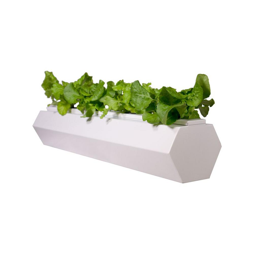 36 in. White Hydroponic Hex Planter with Lid and Grow Kit