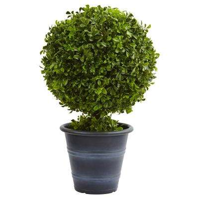 23 in. Boxwood Ball Topiary