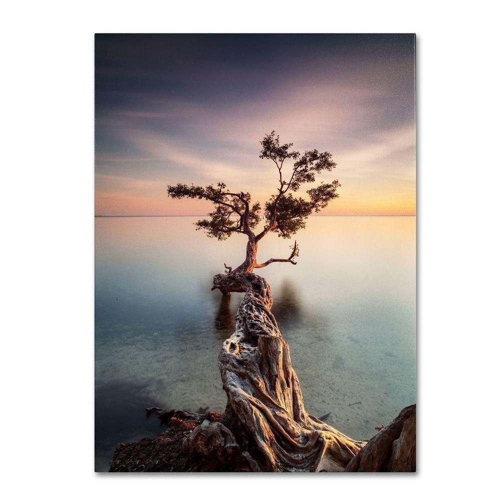 Trademark Fine Art 32 in. x 22 in. Water Tree III Canvas Art