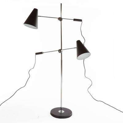 Agueda 65 in. Black Metal Floor Lamp with 2 Adjustable Arms