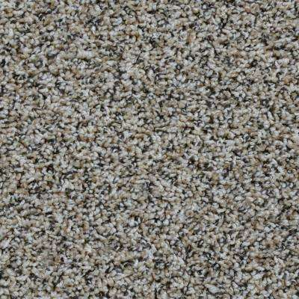Adventurous - Color Woodland Twist 12 ft. Carpet