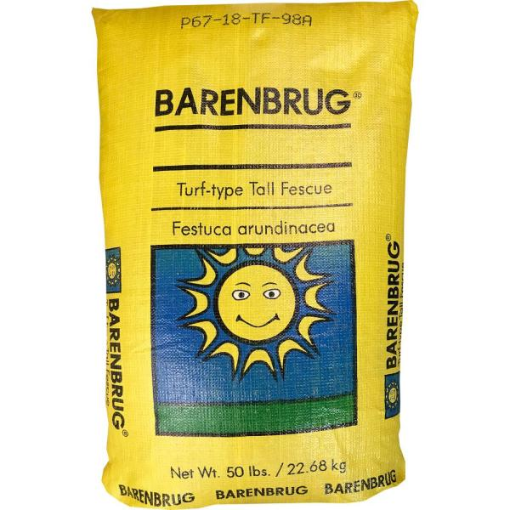 50 lb. Barvado Tall Fescue Grass Seed