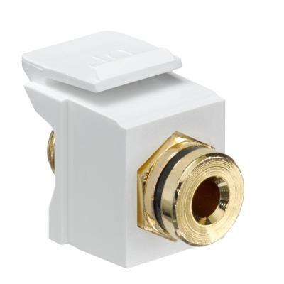 QuickPort Banan Amp Jack Gold-Plated Connector with Black Stripe, White