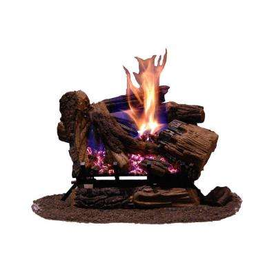 Appalachian Oak 24 in. Vented Natural Gas Fireplace Logs with Remote