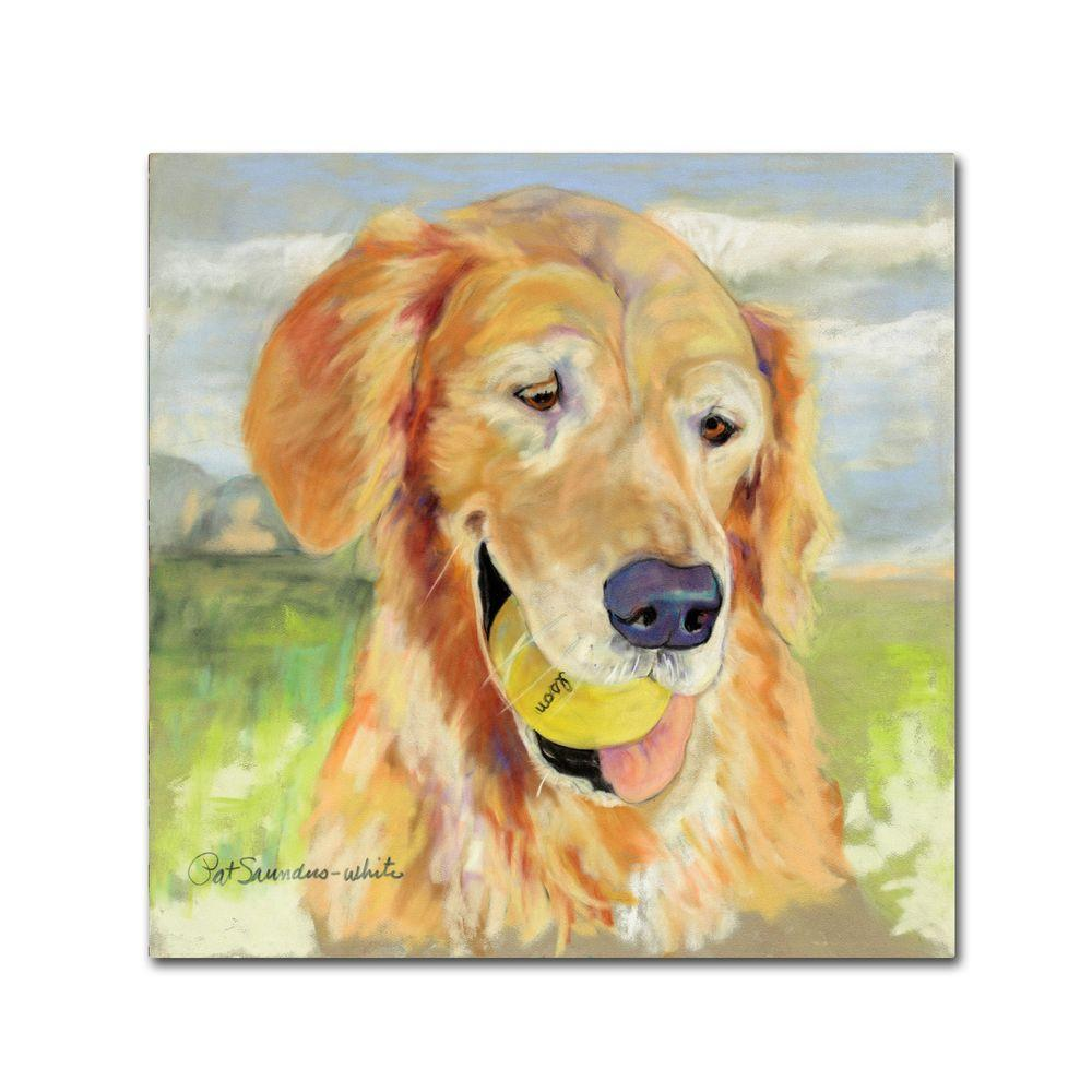 24 in. x 24 in. Gus Canvas Art