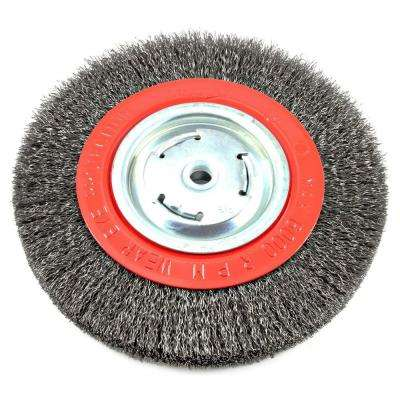 8 in  x 1/2 in  and 5/8 in  Arbor Wide Face Coarse Crimped Wire Bench Wheel  Brush