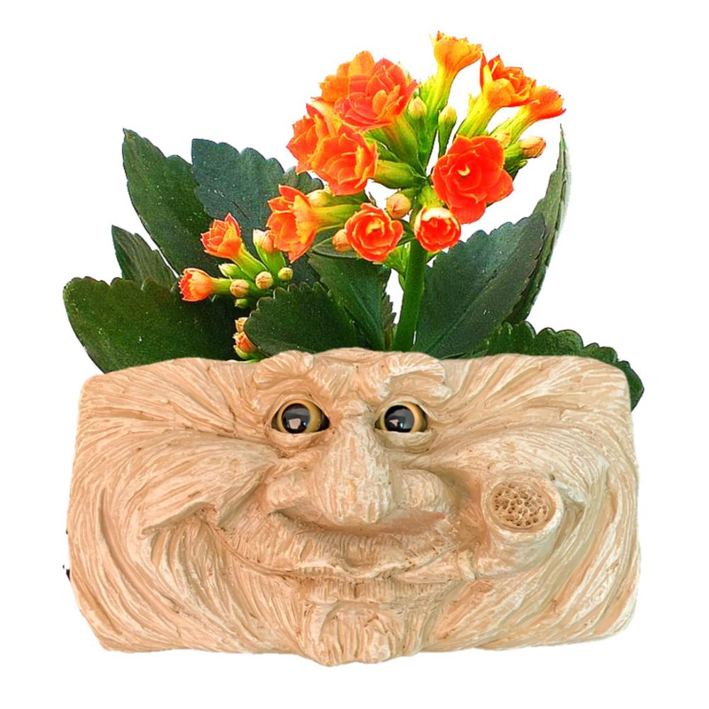 Grandpa Old Hickory Stone Wash 10.5 in. Muggly Face Statue Tree and Patio Wall Resin Planter