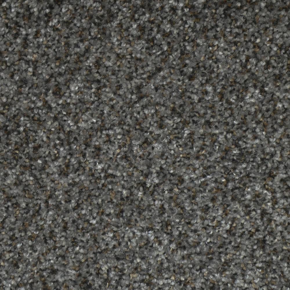 Chastain II - Color Boze Texture 12 ft. Carpet