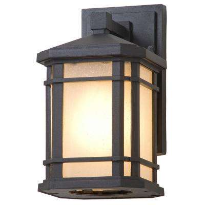 Aaliyah 1-Light Black Outdoor Wall Mount Sconce