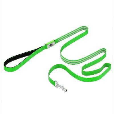 6 ft. Green LED Dog Leash