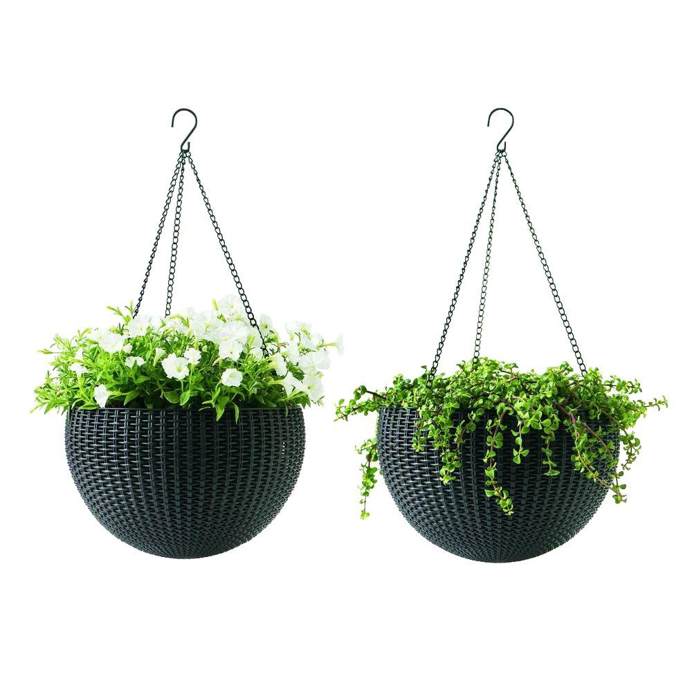 Greatest Keter 13.8 in. Dia Brown Resin Hanging Rattan Planter (2-Pack  BO12
