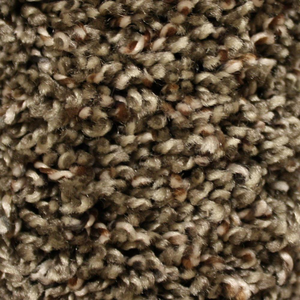 Home Decorators Collection Carpet Sample Shelby I Color Famous Style Twist 8 In
