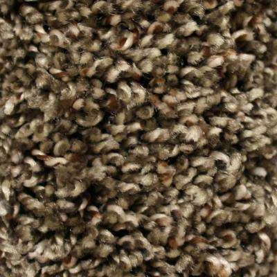 Carpet Sample - Shelby I - Color Famous Style Twist 8 in. x 8 in.