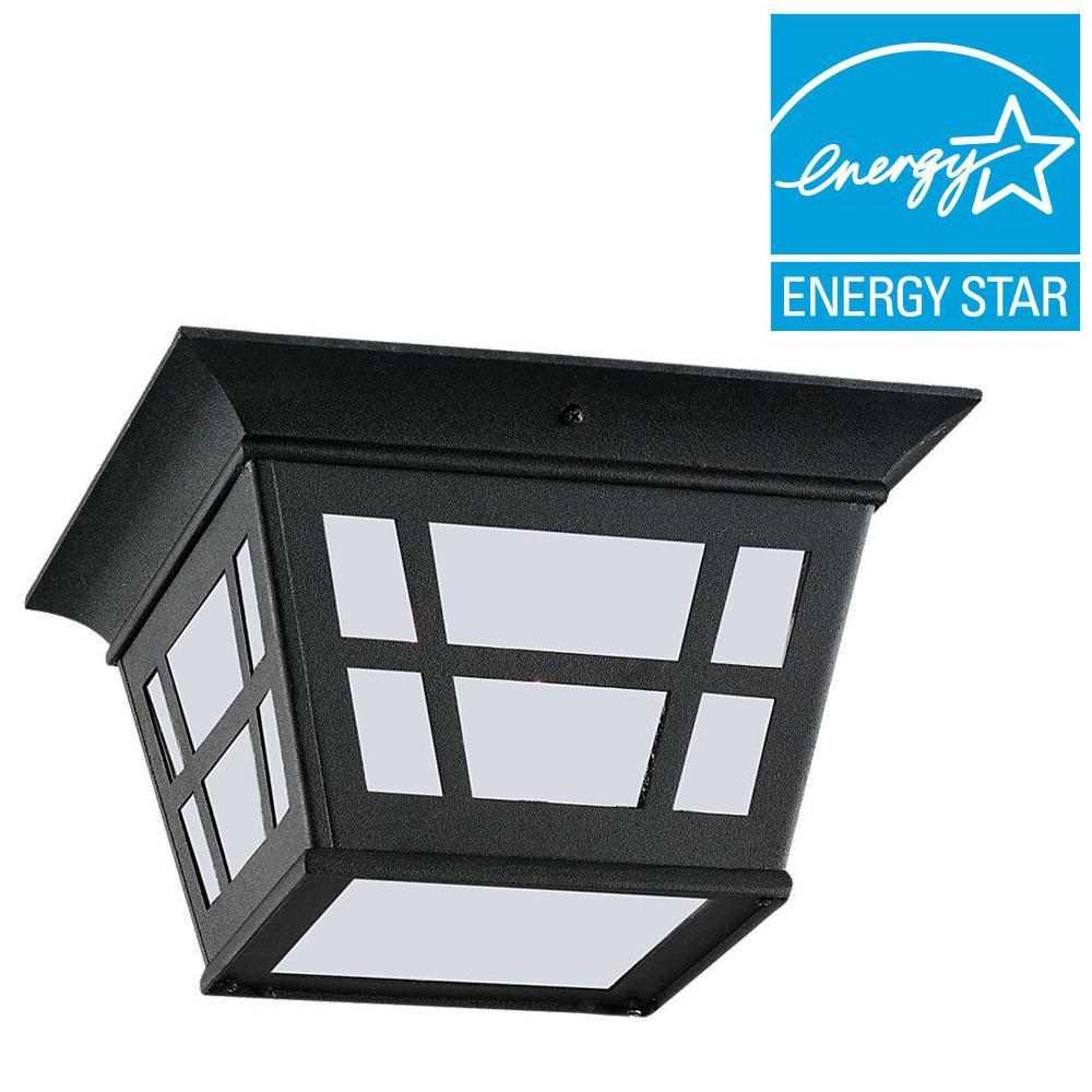 Herrington Black 2-Light Outdoor Flush Mount with LED Bulb