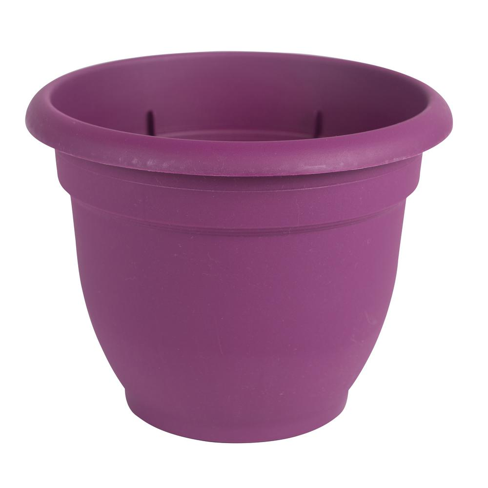 Ariana 6 in. Passion Fruit Plastic Self Watering Planter