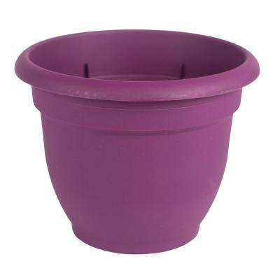 Ariana 12 in. Passion Fruit Plastic Self Watering Planter