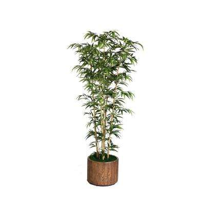 77 in. Tall Natural Bamboo Tree in 16 in. Fiberstone Planter