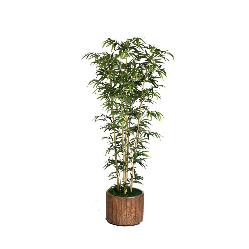 Laura Ashley 77 in. Tall Natural Bamboo Tree in 16 in. Fi...
