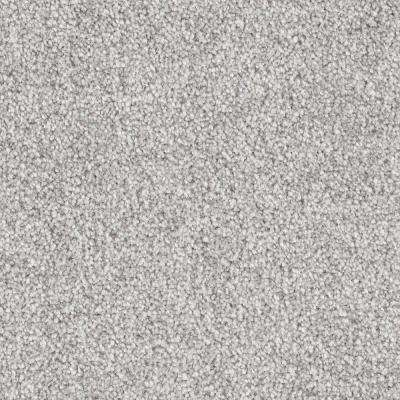 Carpet Sample - Tides Edge - Color Sentinel Textured 8 in. x 8 in.