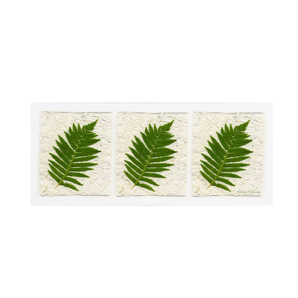 Trademark Fine Art 6 in. x 19 in. Ferns Finish Canvas Art