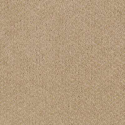 Carpet Sample - Katama II - Color Carved Wood Pattern 8 in. x 8 in.